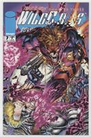 Killer Instinct: Chapter Three, Showdown [Collectable(FN‑NM)]