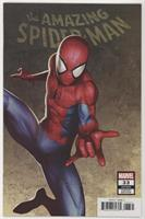 The Amazing Spider-Man [Collectable (FN‑NM)]
