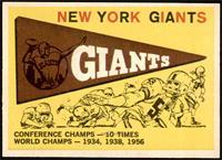 New York Giants Team [NMMT]