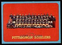 Pittsburgh Steelers Team [NM]