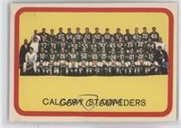 Calgary Stampeders (CFL) Team