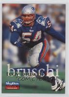 Tedy Bruschi