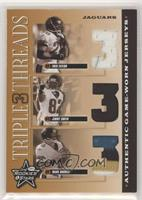 Fred Taylor, Jimmy Smith, Mark Brunell [EXtoNM] #/100