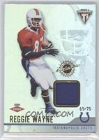 Reggie Wayne #/75
