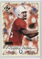 Reggie Wayne /95