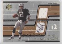 Rich Gannon /300