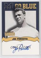 Joe Ponsetto