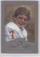 Joe Theismann #/400