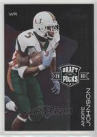 Andre Johnson #/2,003