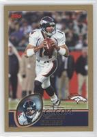 Brian Griese #/499