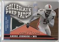 Andre Johnson /75
