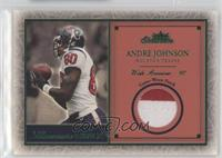 Andre Johnson #/80