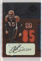 Chad Johnson [EX to NM] #/85