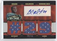 Brian Calhoun /18