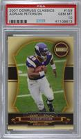 Adrian Peterson /599 [PSA 10 GEM MT]