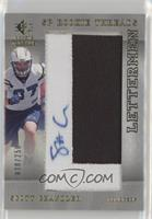 Scott Chandler /250