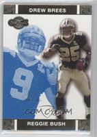 Reggie Bush, Drew Brees /349