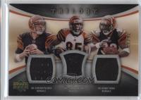 Kenny Irons, Carson Palmer, Chad Johnson #/33