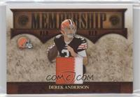 Derek Anderson /25