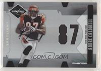 Andre Caldwell #/49
