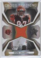 Andre Caldwell #/250
