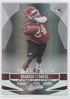 Brandon Flowers /100