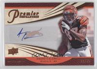 Andre Caldwell #/65