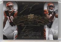 Andre Caldwell, Jerome Simpson /35