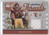 Reggie Bush #/299