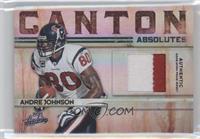 Andre Johnson #/50