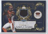 Chad Ocho Cinco /299