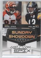 Chad Ocho Cinco, Troy Polamalu #/200
