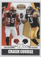 Chad Ocho Cinco, Troy Polamalu /250