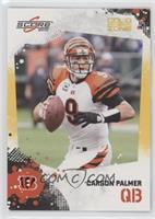 Carson Palmer /299