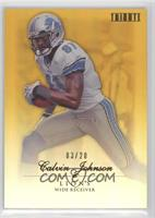 Calvin Johnson /20