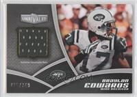 Braylon Edwards #/349