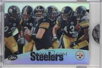 Pittsburgh Steelers Team /859