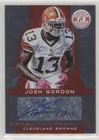 Josh Gordon #/290