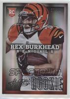 Rex Burkhead #/49