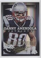 Danny Amendola /25