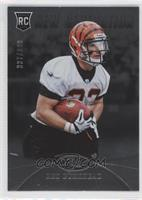 New Generation - Rex Burkhead /999