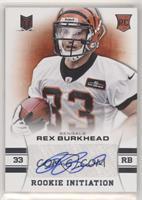 Rex Burkhead #/299