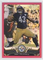 Troy Polamalu /399
