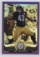 Troy Polamalu /499