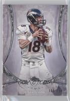 Peyton Manning /208