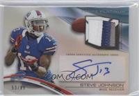 Steve Johnson /99