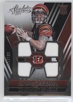 AJ McCarron /249