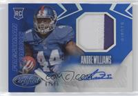 Freshman Fabric Mirror Signatures - Andre Williams #/99