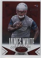 James White /249
