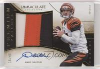Andy Dalton [EX to NM] #/49